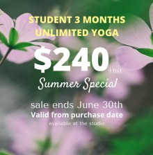 Student Summer Special (1)