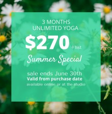Summer Special Unlimited (1)
