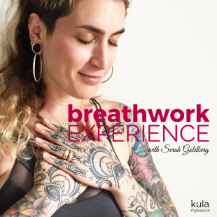 New Breath Work Web