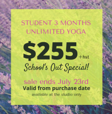 Student Summer Special